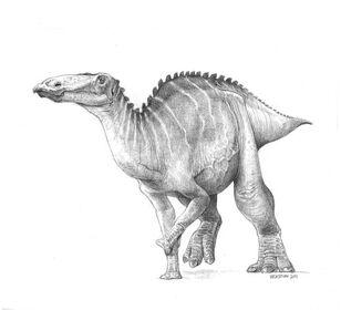 Clayosaura