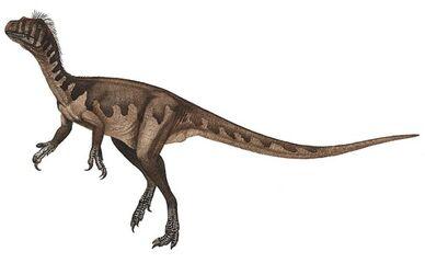 611px-Guaibasaurus