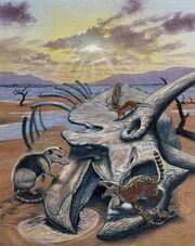 Primitive-mammals-triceratops-skull