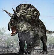 Zuniceratops is better!