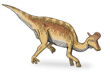 Lambeosaurus2-v2