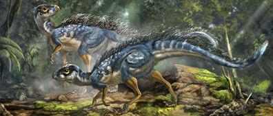 Tiayulong meaning tianyu dragon