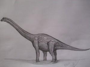 300px-Lusotitan atalaiensis by teratophoneus-d3y6wjm