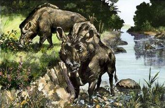 Entelodon | Cool Dino Facts Wiki | Fandom