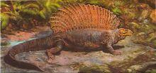 Edaphosaurus2