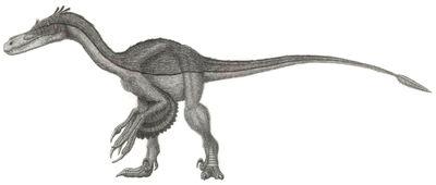 Airakoraptor,2
