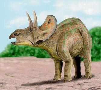 DiceratopsNT