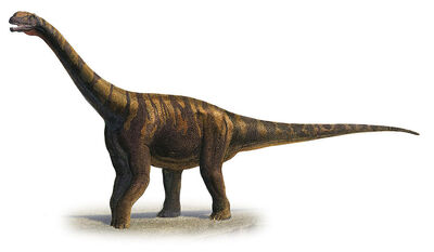 Abrosaurus-dongpoi-a-prehistoric-era-sergey-krasovskiy
