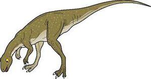 Pisanosaurus