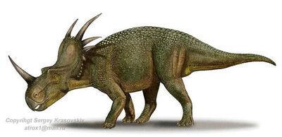 SergeyKrasovskiyStyracosaurus