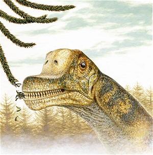 Abydosaurus mcintoshi