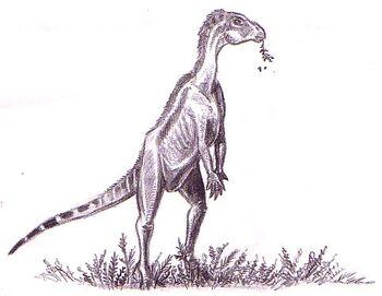 Zephyrosaurus schaffi by patriatyrannus