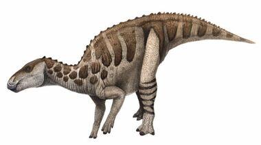 677px-Bactrosaurus