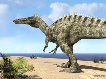 Suchomimus on beach 1280