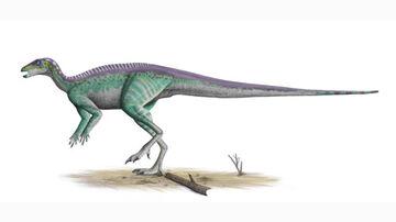 Parksosaurus2