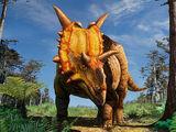 Xenoceratops