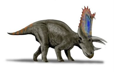 Pentaceratops BW-1-