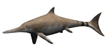 Ichthyosaurus1