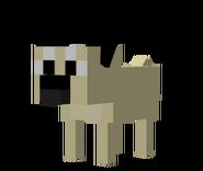 Copious Pug