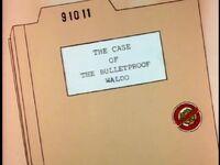 The Case of the Bulletproof Waldo