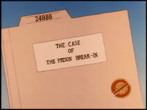 The Case of the Prison Break-In