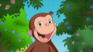 Curious george spring
