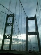Tacoma-Narrows-Bridge.