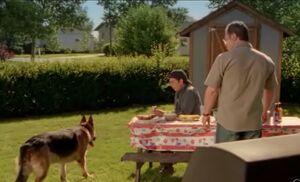 S03E05-Brent's backyard