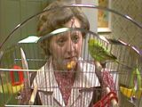 Episode 2226 (2nd August 1982)