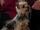 David (dog)