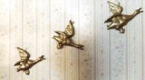 Hilda's ducks-Image