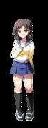 Seiko Cuerpo Completo