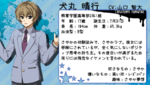 2U-Inumaru-profile
