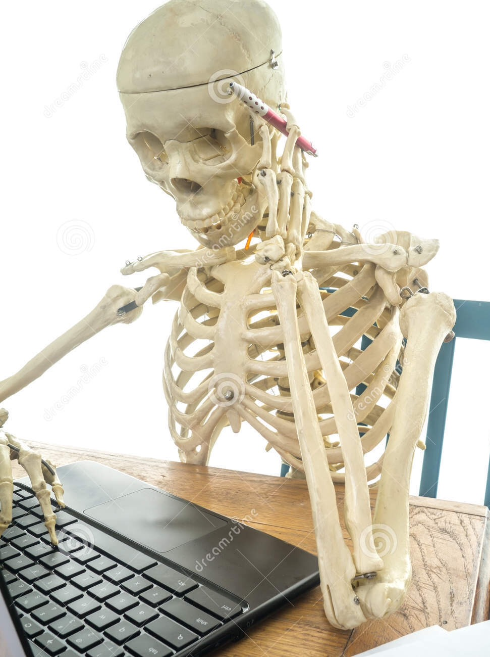 Skeleton Waiting At Computer