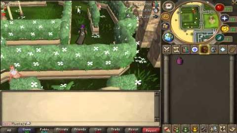 CorruptionX Sorcerer's Maze