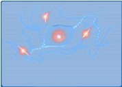 Neuron Firing 2