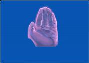 Hand Reaching 1