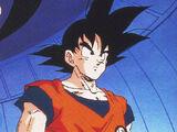 Dragon Ball cosplay