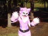 Cheshire Cat (Book)