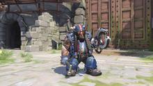Torbjörn chopper