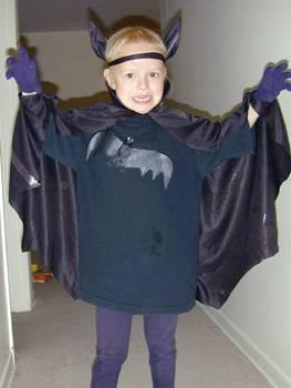 Файл:Bat.jpg