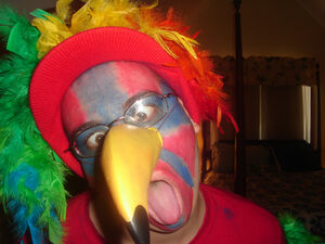 Parrot Costume (2)