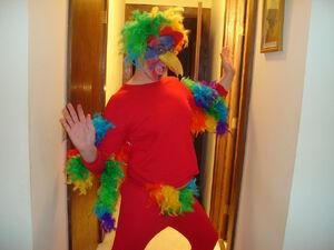Parrot Costume (1)