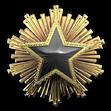 Medal za służbę 2016 Poziom 7