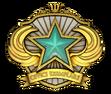 Medal za służbę 2018 Poziom 2