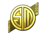 TSM Kinguin (Gold) ESL One Katowice 2015