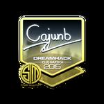 Cajunb (Folia) Cluj'15
