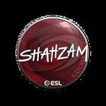 ShahZaM Katowice'19