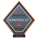 Dreamhack 2013 Semi-Finalist Trophy