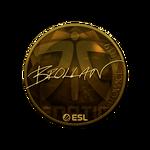 Brollan (Gold) Katowice'19